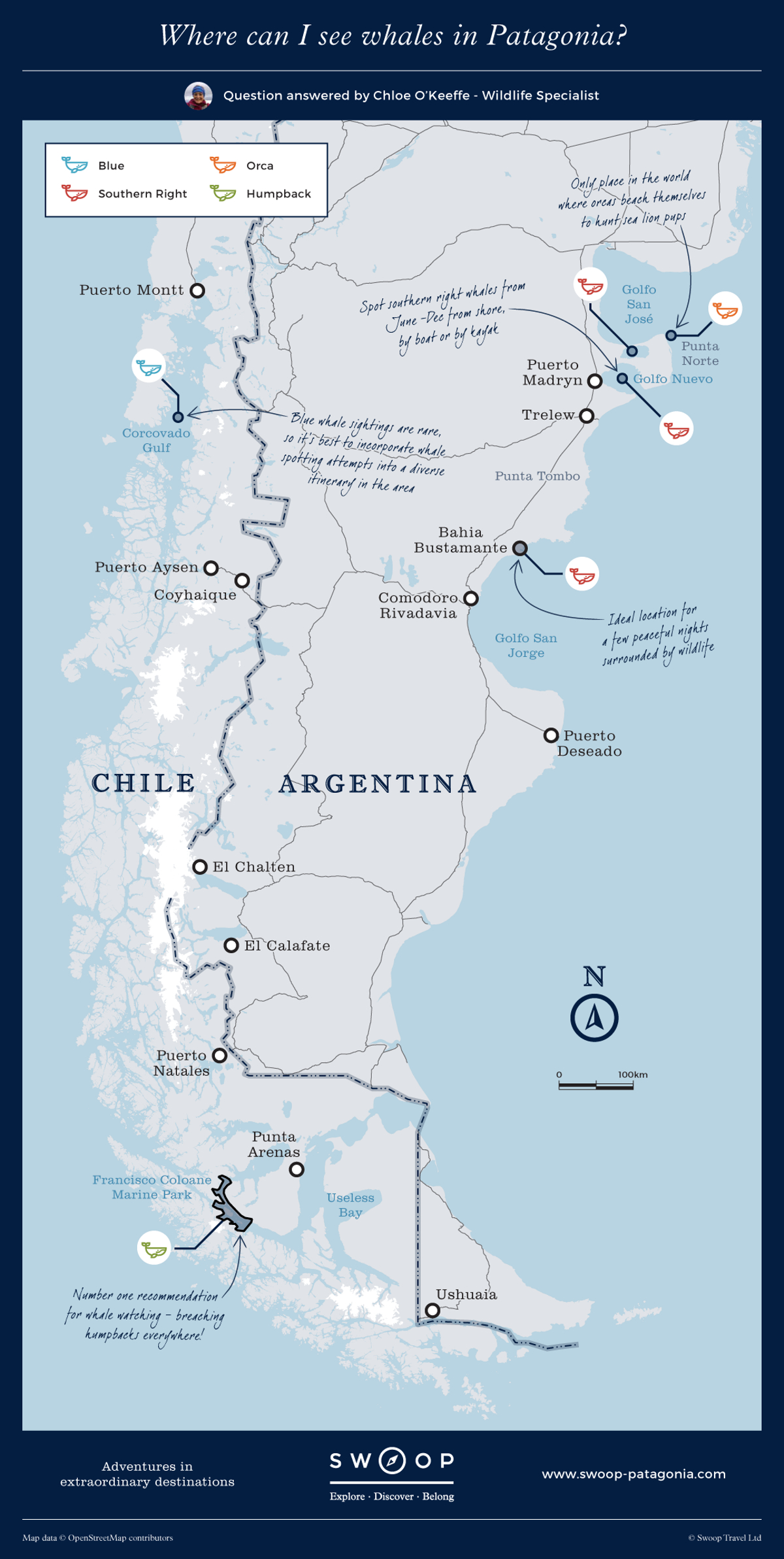 New Map Where-can-I-see-whales-in-Patagonia