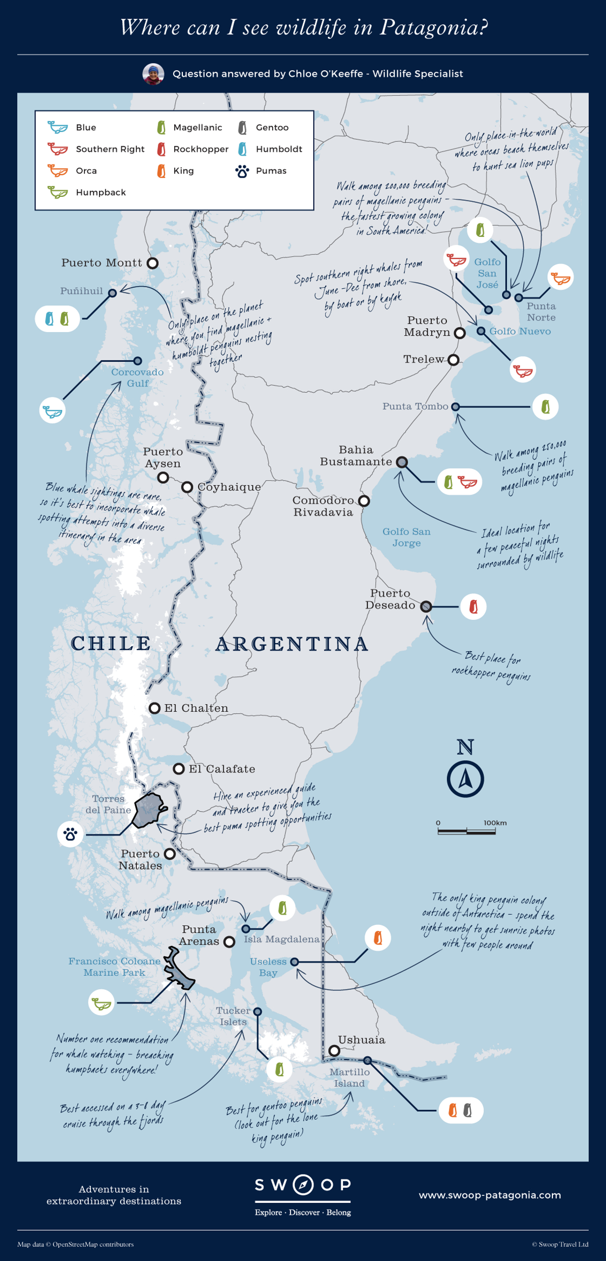 New map Where-can-I-see-wildlife-in-Patagonia