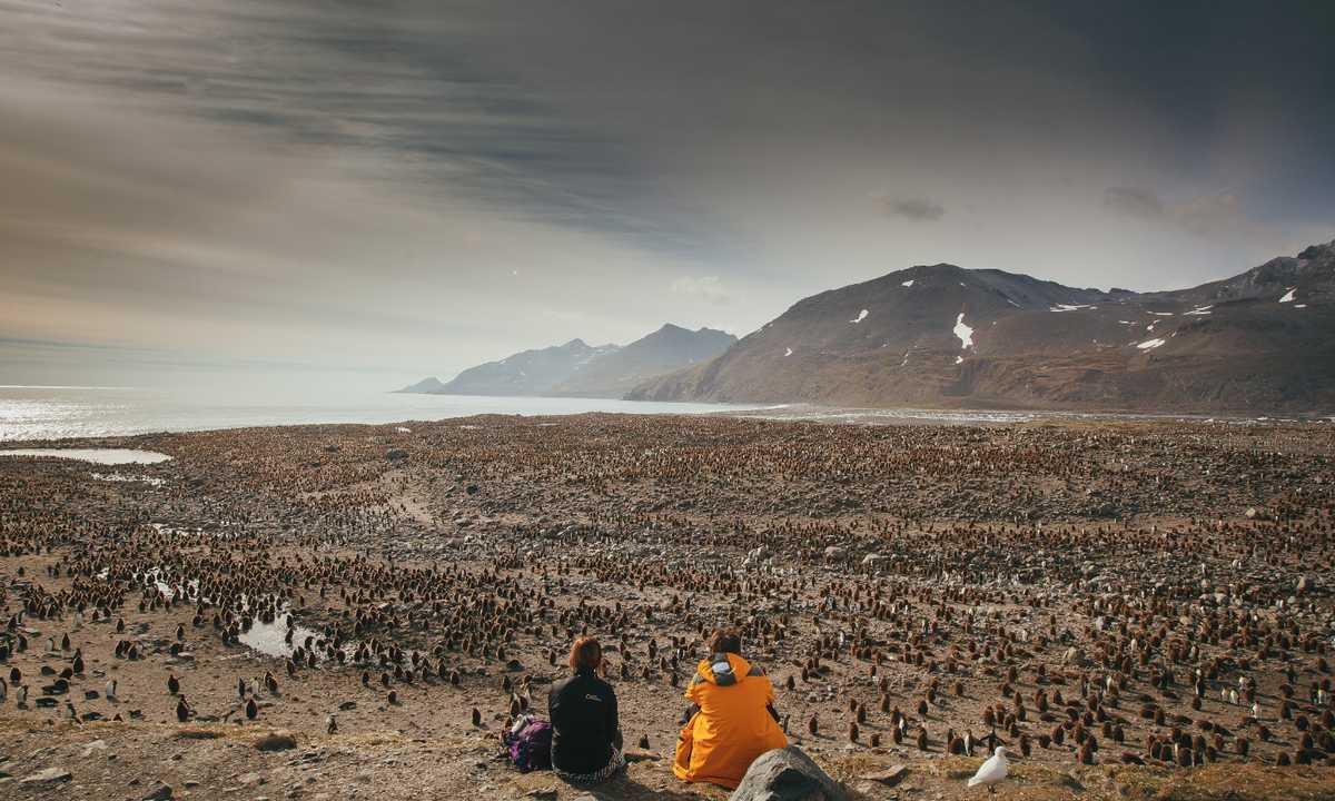 SG-landscape