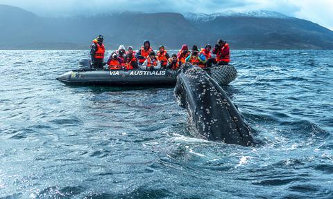 Patagonia Adventure Cruises