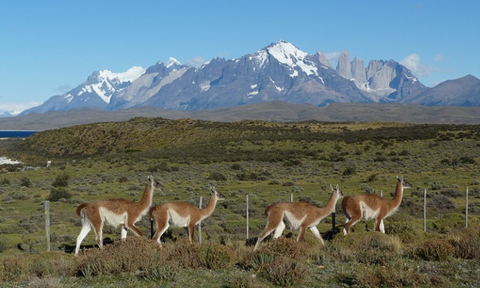 The Best of Chile & Argentina, 14 nights