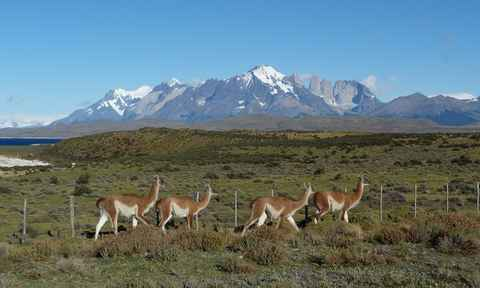 The Best of Chile & Argentina