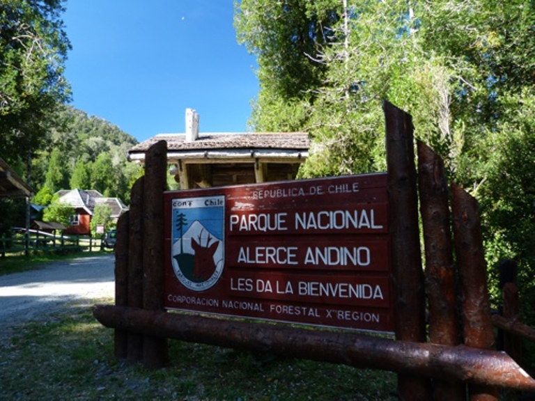 Alerce Andino National Park Sign - Small - SD