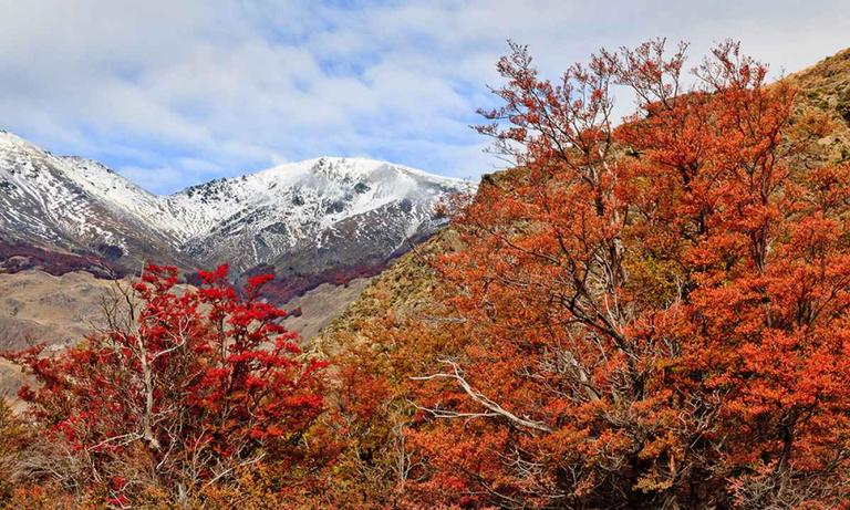Patagonia-Park-3