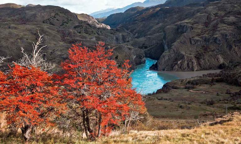Patagonia-Park-4