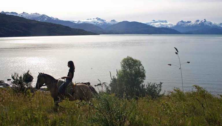Horse-with-Lake-M_GDL
