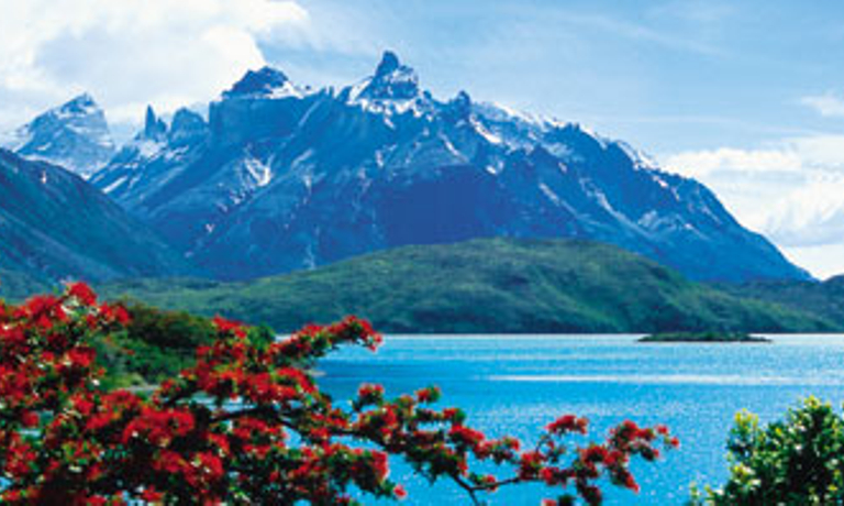 Patagonia Parks and Wildlife