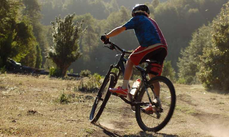 Lake Llanquihue Self Guided Biking