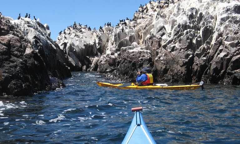 Kayak Bahia Bustamante
